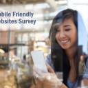 Mobile Friendly Websites Survey