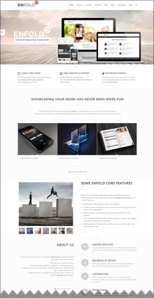enfold-wordpress-theme-220
